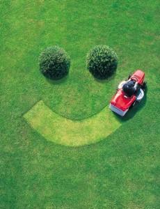 Lawn-Mowing-Fresh-Cut-Grass-Smell