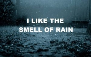 What is the smell of rain?